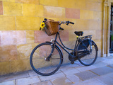 UK  England  Cambridge  Clare College  Bicycle
