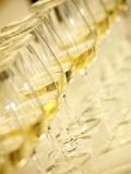 Several Glasses of White Wine for Wine Tasting