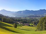 Alpine Meadow  Mondsee  Mondsee Lake  Oberosterreich  Upper Austria  Austria