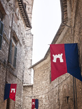 Italy  Umbria  Terni District  Narni  Corsa All'Anello  Historical Horses Fair