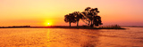 Sunset and Island  Chobe River Near Kasane Africa  Botswana  Chobe National Park