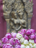 Flower Offerings at Wat Phnom  Phnom Penh  Cambodia