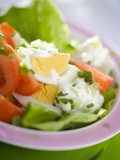 Lettuce  Egg  Tomato and Yoghurt Dressing