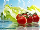 Tomatoes and Romaine Lettuce with Water
