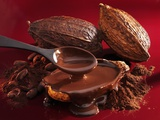 Chocolate Sauce  Cocoa Powder  Cocoa Beans and Cacao Fruits