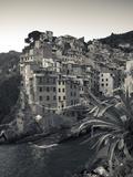 Riomaggiore  Cinque Terre  Riviera Di Levante  Liguria  Italy