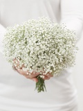 Woman Holding a Bouquet of Gypsophila