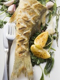 Fried Sea Bass with Herbs  Garlic and Lemon