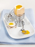 A Boiled Egg in an Eggcup