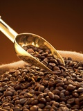Coffee Beans in Sack and in Golden Scoop