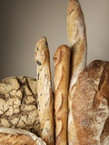 Assorted Loaves of Bread and Baguettes