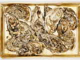 Fresh Oysters in Crate