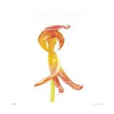 Orange Tulip No 3