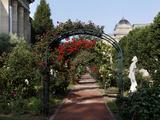 Jardin des Plantes (Botanical Gardens)  Paris  5th arrondissement  France