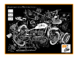 Anatomy of a Motorcycle