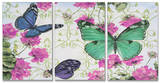 Butterfly Inspirations Triptych Art