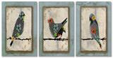 Song Bird Trio Triptych Art