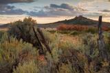 Southern Utah Roadside
