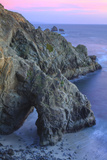 The Arch at Bodega Head