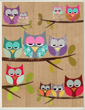 Woodland Owls on Branches