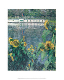 Sunflowers along the Seine  ca 1885–1886