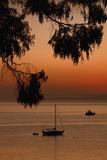 San Pablo Bay Sunrise
