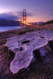 Scene at Golden Gate South