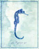 Seahorse B