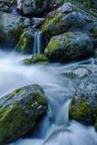 Precious Water  Alder Creek