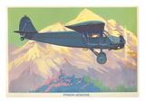 Stinson Detroiter Airplane