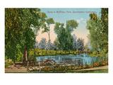 Mckinley Park  Sacramento  California