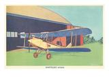 Whittelsey Avian Biplane
