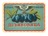 Label for Russian Grape Product