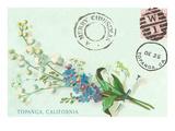 Old Fashioned Postcard  Topanga  California