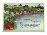 Christmas Greetings from California Pond