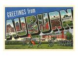 Greetings from Auburn  Alabama