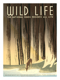 National Parks Travel Poster  Wild Life