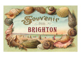Souvenir from Brighton  England