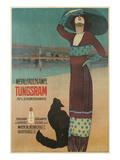Fashionable Woman with Cat on Beach