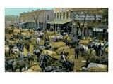 Early Cotton Market  Marietta  Georgia