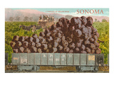 Train Carload of Grapes from Sonoma