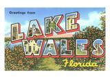 Greetings from Lake Wales  Florida