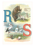 Alphabet Animals  R and S