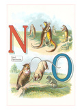 Alphabet Animals  N and O