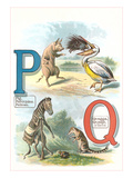 Alphabet Animals  P and Q