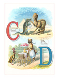 Alphabet Animals  C and D