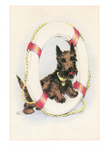 Brown Terrier in Lifesaver