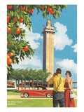Citrus Tower  Clermont  Florida