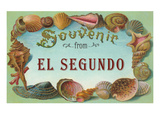 Seashells  Souvenir from El Segundo  California