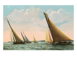 Sloop Regatta